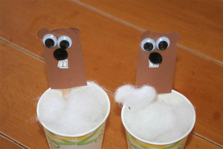 Paper Cup Groundhogs